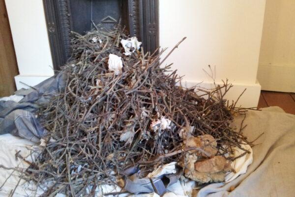 Chimney waste